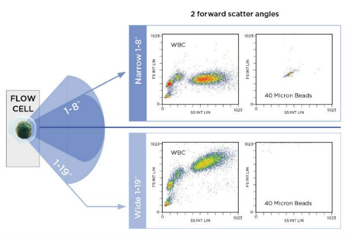 Navios EX FSC Angles
