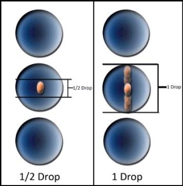 Drop Sort