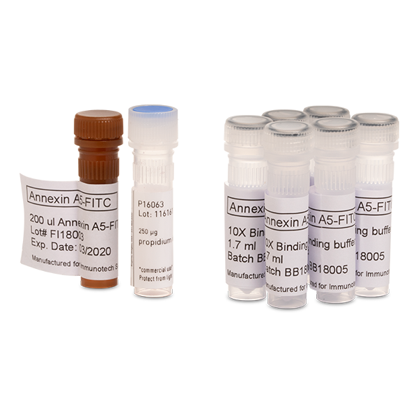 Two hundred test kit containing Annexin V and Propidium Iodine for identifying apoptotic cells