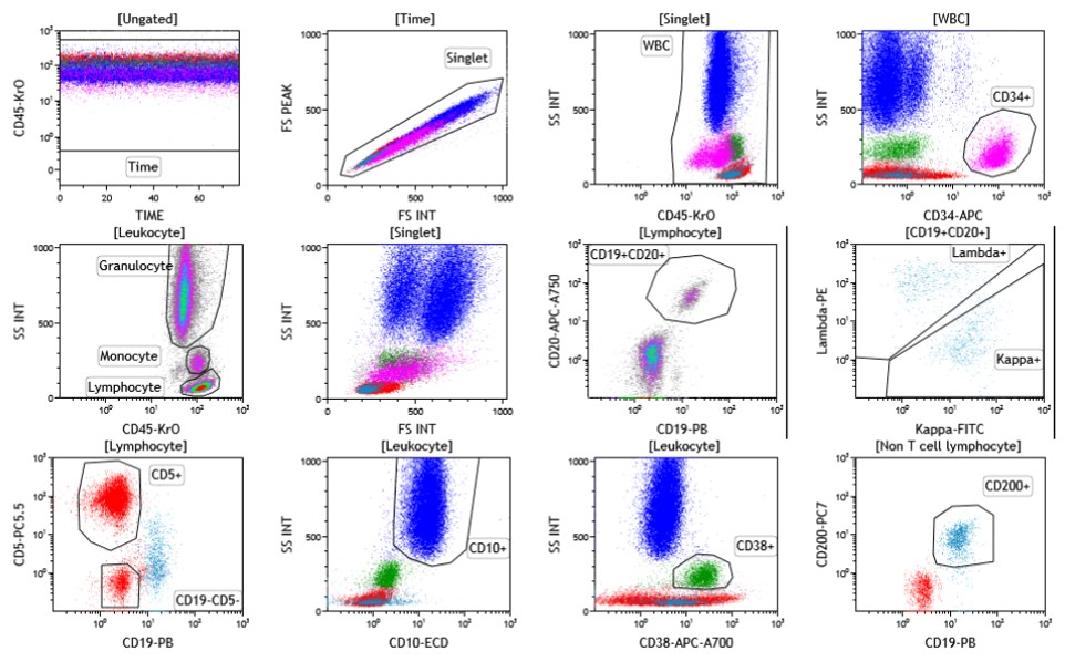 ClearLLab 10C Data B-Cell Tube for Abnormal Cell Control