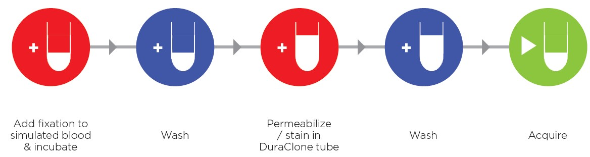 DuraClone IF Workflow Illustration
