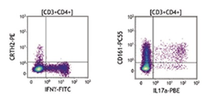 DURAClone IF flow cytometry reagent CD3 CD4