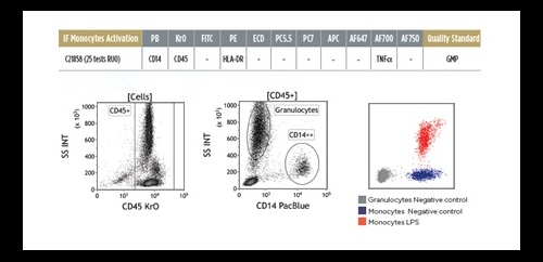 DURAClone IF flow cytometry reagent