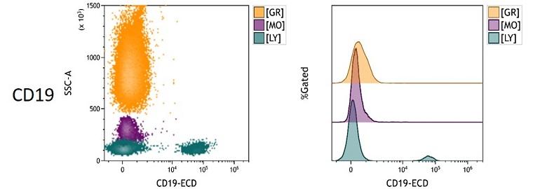 CD19 Measured Antigen Density in Whole Blood