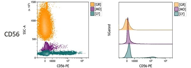CD56 Measured Antigen Density in Whole Blood