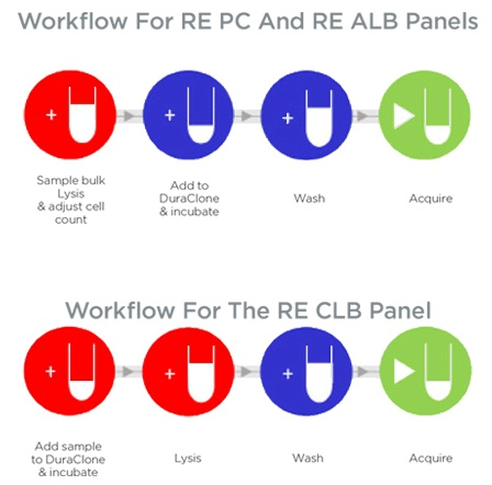 DURAClone Workflow RE-PC and RE-ALB panels