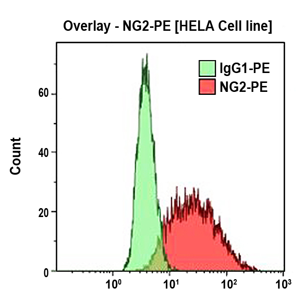 NG2-PE