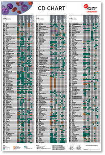 Flow reagents single color antibodies CD Chart