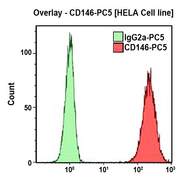 CD146-PC7