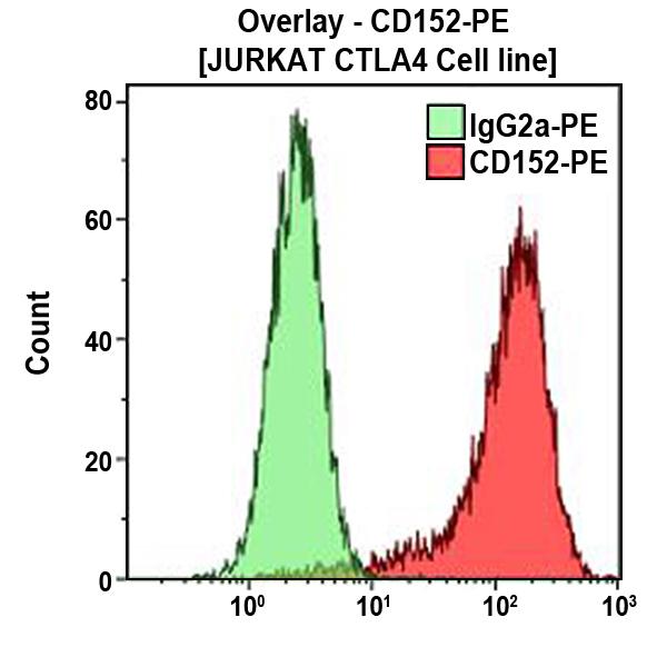 CD152-PE