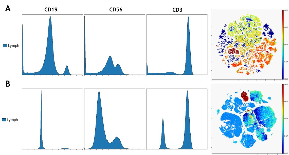 Effect of data transformation on viSNE visualization