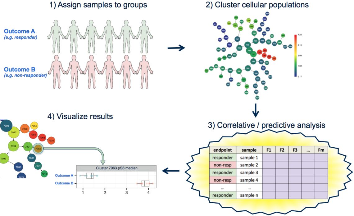 CITRUS unsupervised and supervised Machine Learning automatically find biomarkers