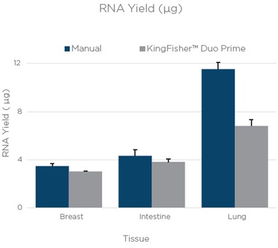 RNA Yield. Figure 1. The average yield from three technical replicates of RNA and DNA extraction done manually or on a KingFisher™ Duo Prime. The bars are an average yield of three technical replicates as calculated by Quant-iT assay (Thermo Fisher Scientific). Error bars are the standard deviation of three technical replicates.