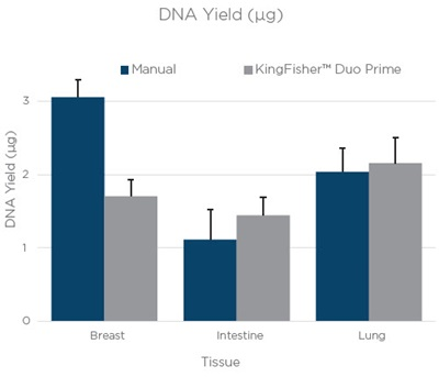 DNA Yield. Figure 1. The average yield from three technical replicates of RNA and DNA extraction done manually or on a KingFisher™ Duo Prime. The bars are an average yield of three technical replicates as calculated by Quant-iT assay (Thermo Fisher Scientific). Error bars are the standard deviation of three technical replicates.