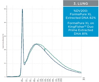 3. Lung - Figure 3. Representative electropherograms of DNA isolated using FormaPure XL Total manually (green traces) and using the KingFisher™ Duo Prime (blue traces) from breast, intestine and lung FFPE samples are shown.