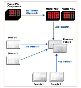Figure 1. PCR Reaction Setup Process