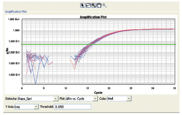 Figure 6. Real-Time PCR amplification (20 μL/reaction): using ABI 7900HT Fast Real-Time PCR System. The above data contains the β-actin real-time PCR reaction results from 32 samples (average Ct = 15.72 with 1.74% CV). Each β-actin qPCR reaction amplified 8 ng human genomic DNA (Promega), β-actin primer pairs (Promega), and KAPA SYBR FAST qPCR Master Mix (KAPABIOSYSTEMS).