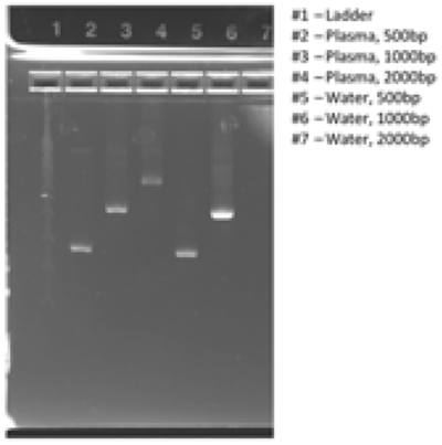 Genomics Application Note Viral Nucleic Acid Extraction Figure 2