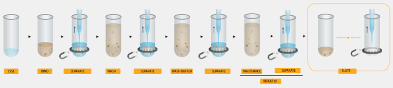 Genomics Workflow Viral Nucleic Acid Extraction Application Note