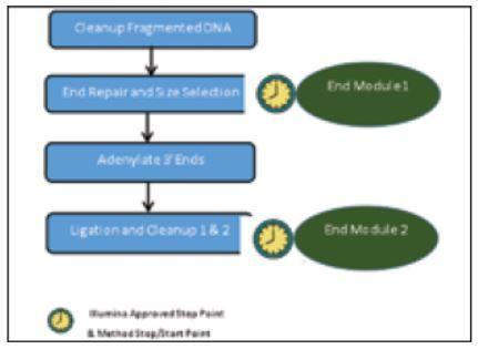 Genomics Workstation Workflow Figure 6