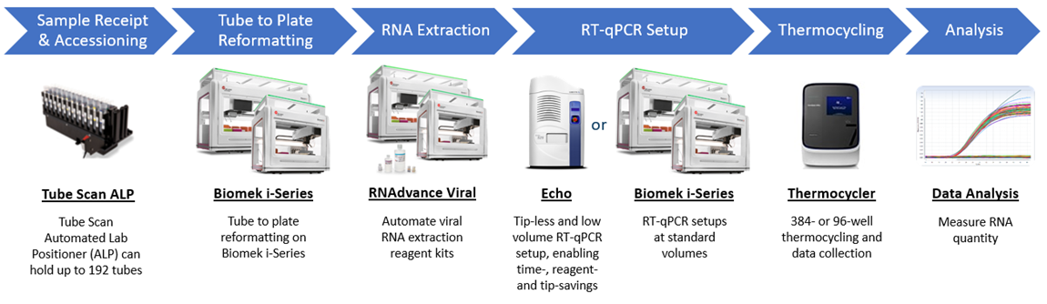 Fully-Automated Viral RNA Extraction and Detection Workflow Steps