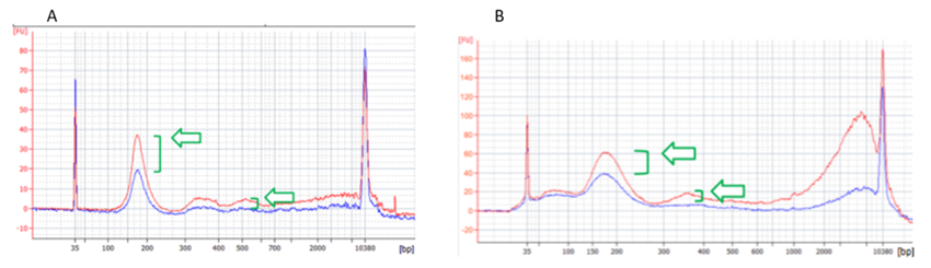 Genomics cfDNA Isolation Characterized