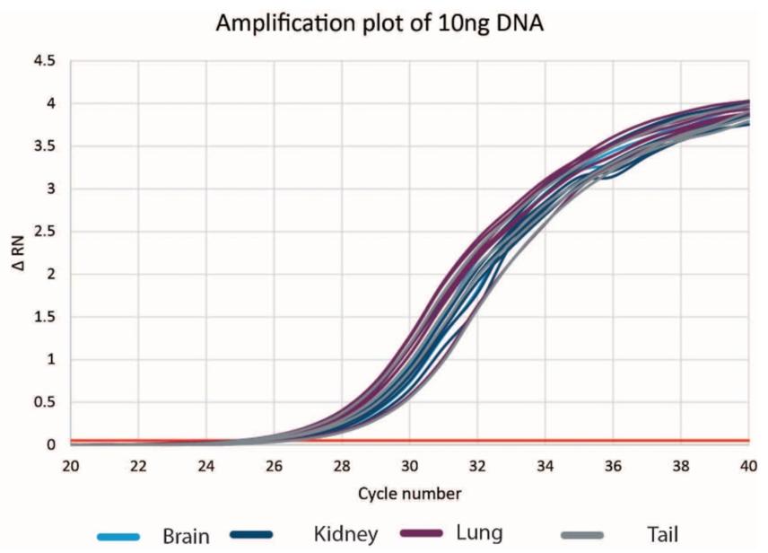 Genomics DNAdvance 조직은 DNA를 증폭