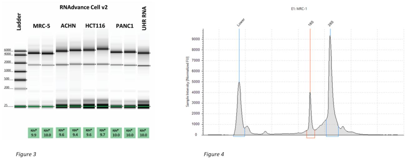 Genomics RNAdvance Cells RIN Scores