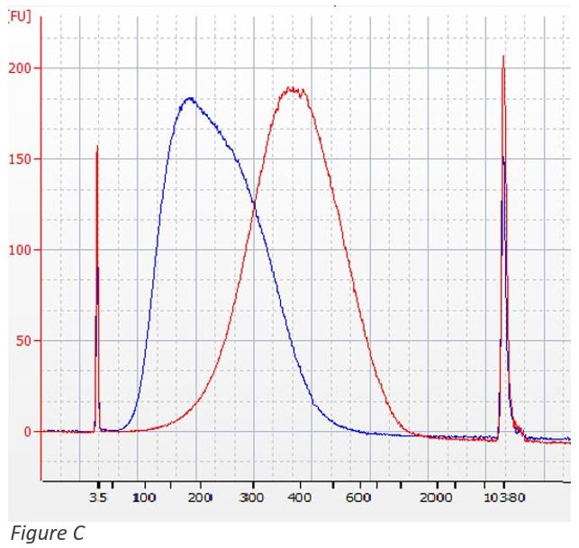 SPRIselect - Superposición de las selecciones de tamaño izquierdo y derecho