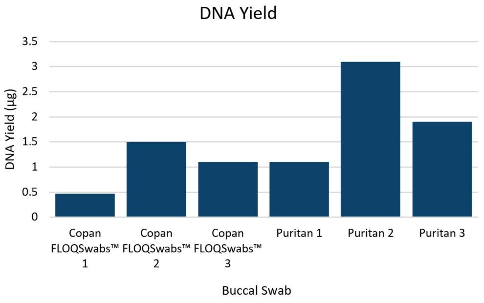 Genomics POP DNA Isolation from Buccal Swabs