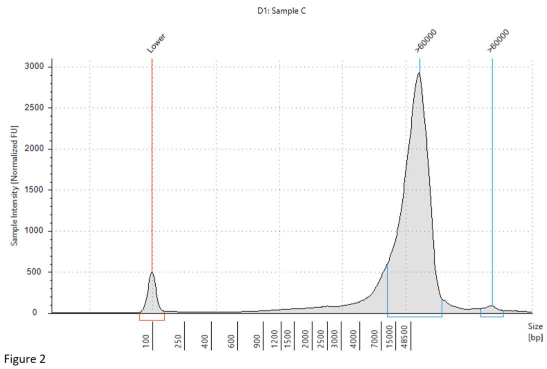 Genomics PoP DNA Isolation from Cells Figure 2
