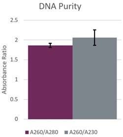Genomics PoP DNA Isolation from Mouthwash and Saliva Figure 2