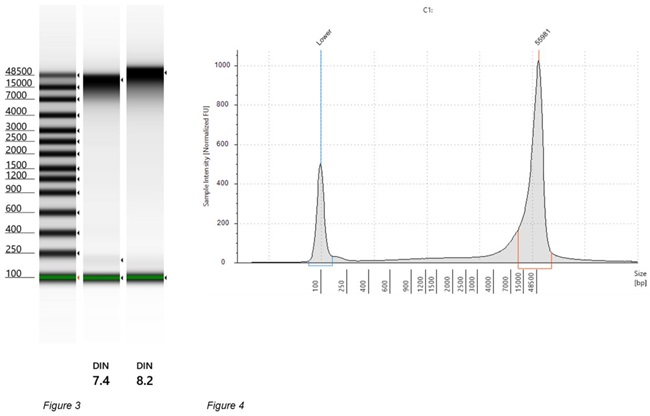 Genomics PoP DNA Isolation from Mouthwash and Saliva Figure 3 and 4