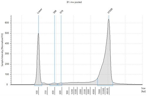 Genomics PoP DNA Isolation from Mouthwash and Saliva Figure 7