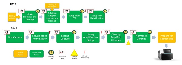 Figure 3: Automated TruSight® Tumor 170 workflow on the Biomek i5 Span-8 NGS Workstation