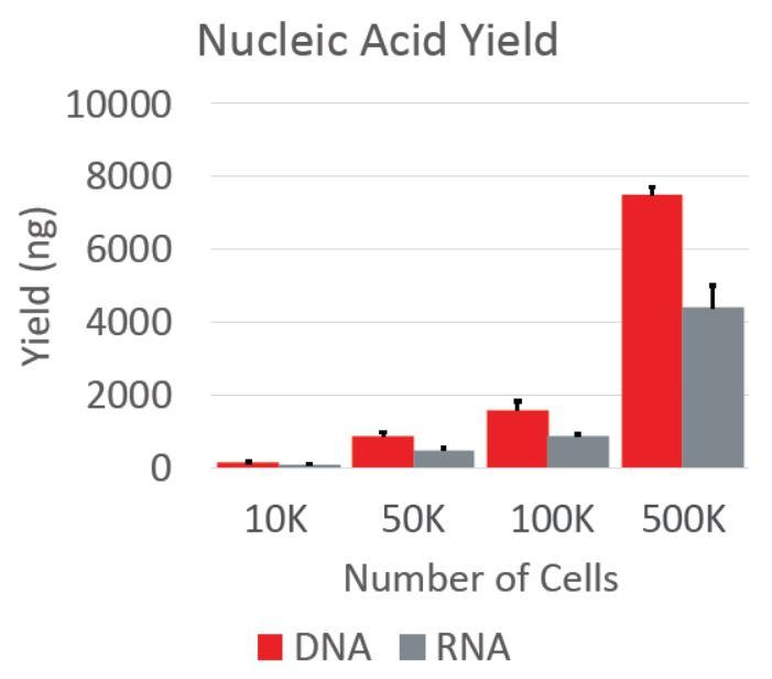 Póster genómico Muestra de cultivo celular
