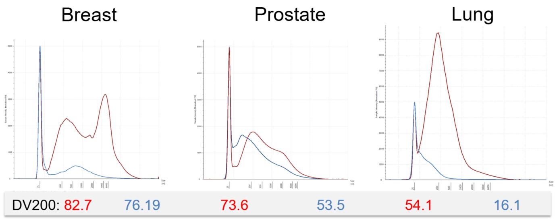Póster genómico Calidad del ARN Figura 3