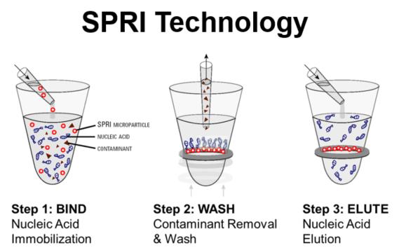 Póster genómico Tecnología SPRI Figura 1
