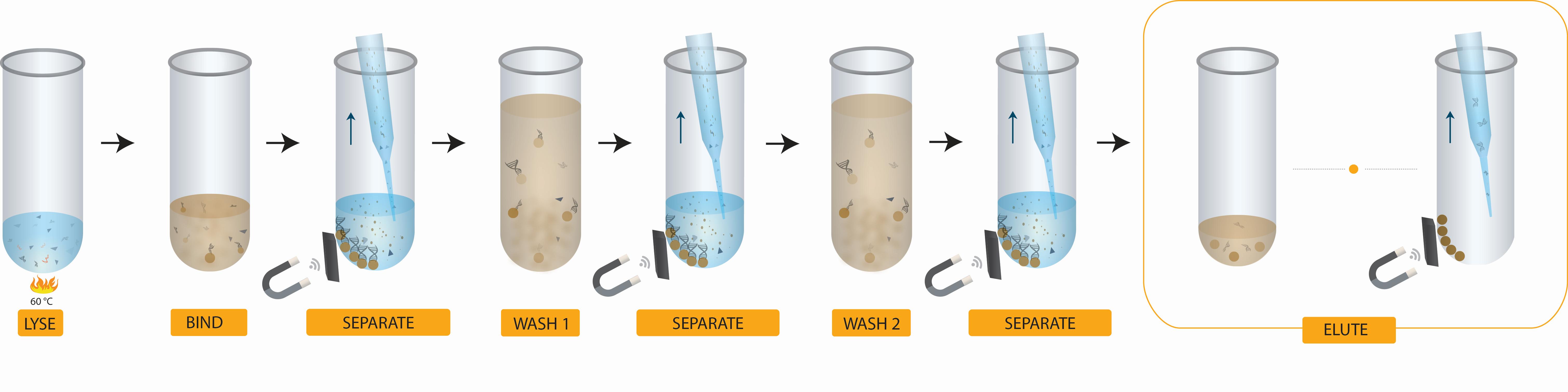 Cell-Free DNA Isolation Workflow Apostle MiniMax Reagent Kit