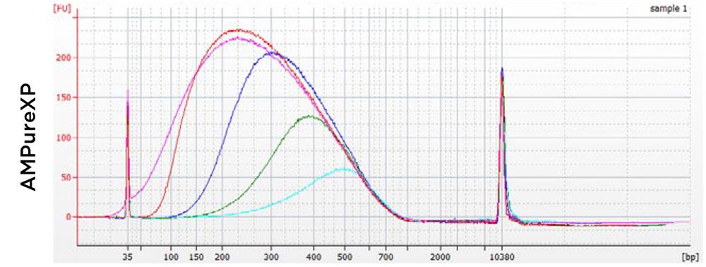 AMPure XP performance chart
