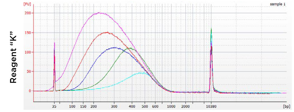 AMPure XP 성능 비교 차트 - 경쟁사 1