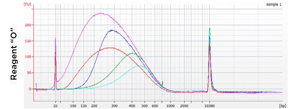 AMPure XP 성능 비교 차트 - 경쟁사 2
