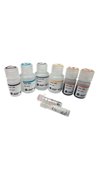 Agencourt FormaPure Total DNA RNA Isolation from FFPE Tissue