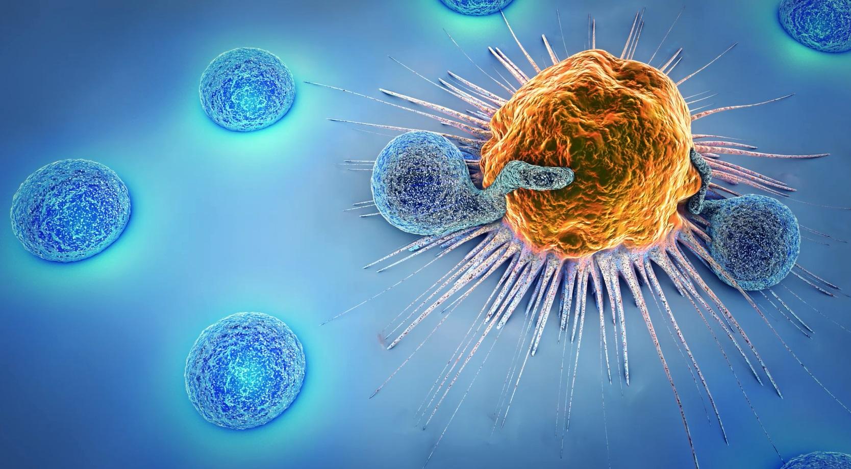 Immuntherapie CAR-T-Therapie