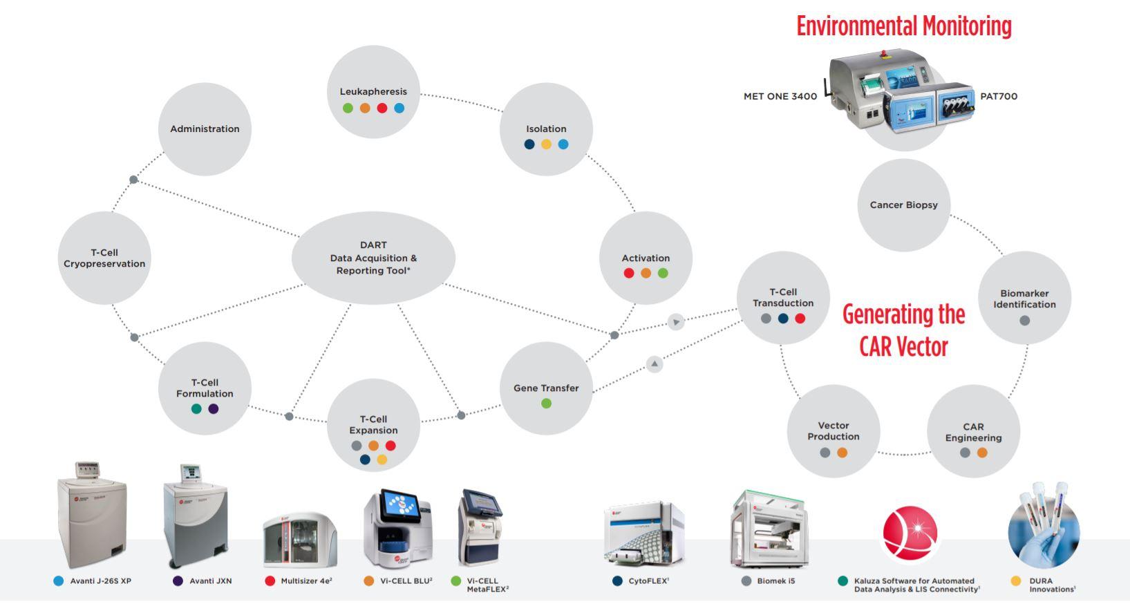 CAR-T Production Workflow