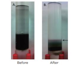 graphic6 - Carbon Nanotube