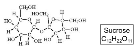 sucrose molecules contain 12 carbon atoms