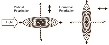 Scattering from Different Polarizations