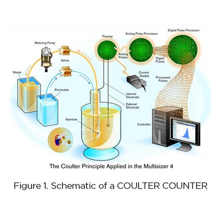 Schematic of a Coulter Counter