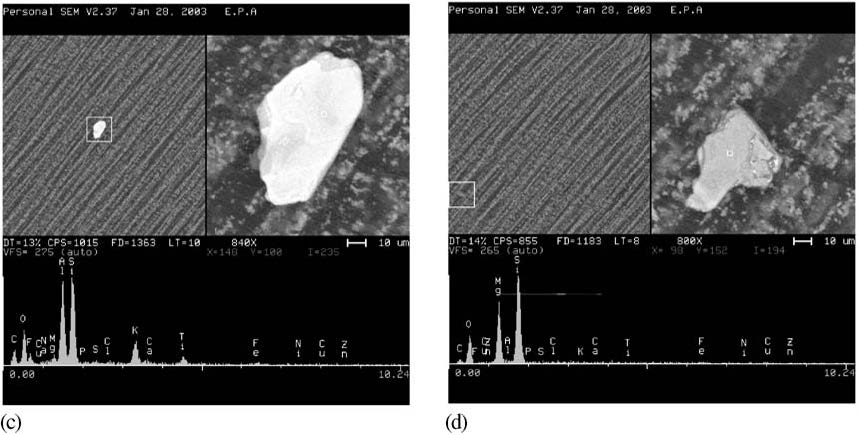 Examples of Particles Seen Under a Scanning Electron Microscope